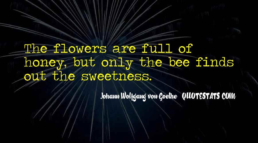 I Am Sorry Honey Quotes #2808