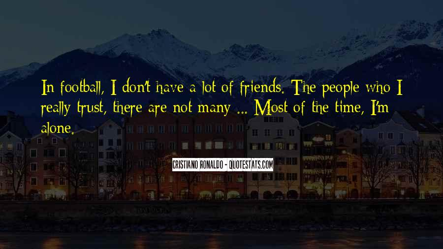 I Don't Have Many Friends Quotes #1037632