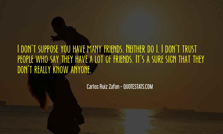 I Don't Have Many Friends Quotes #1656858
