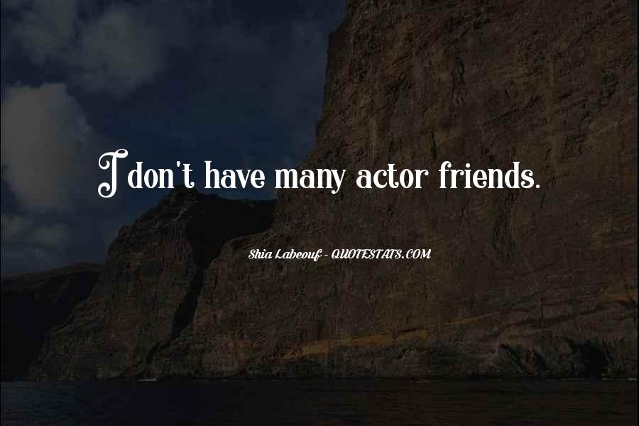 I Don't Have Many Friends Quotes #1728545