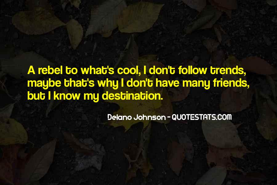 I Don't Have Many Friends Quotes #418552