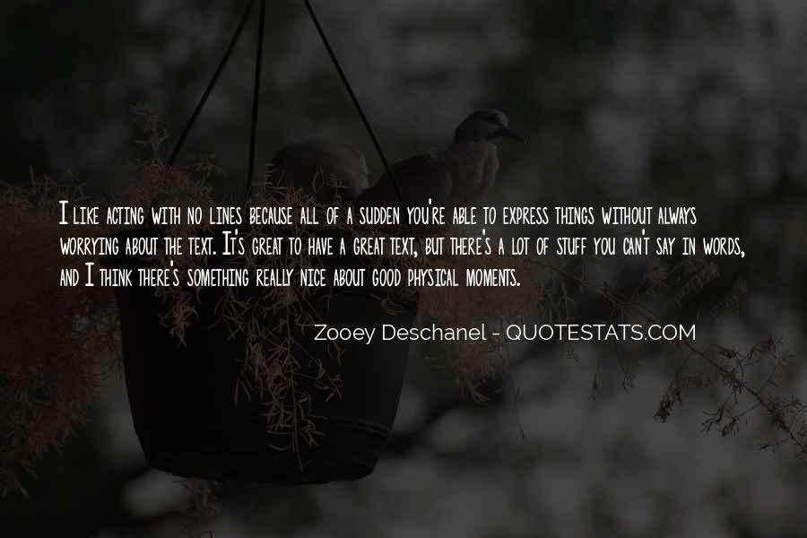 I Like Nice Things Quotes #1379989