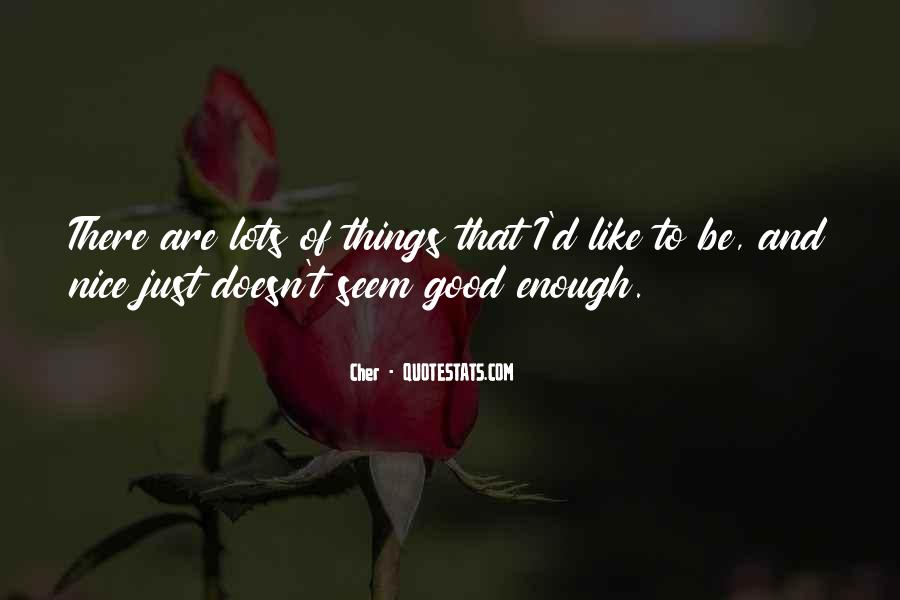 I Like Nice Things Quotes #599847