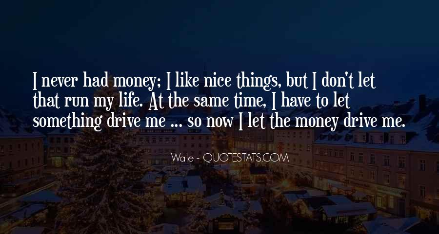 I Like Nice Things Quotes #628445
