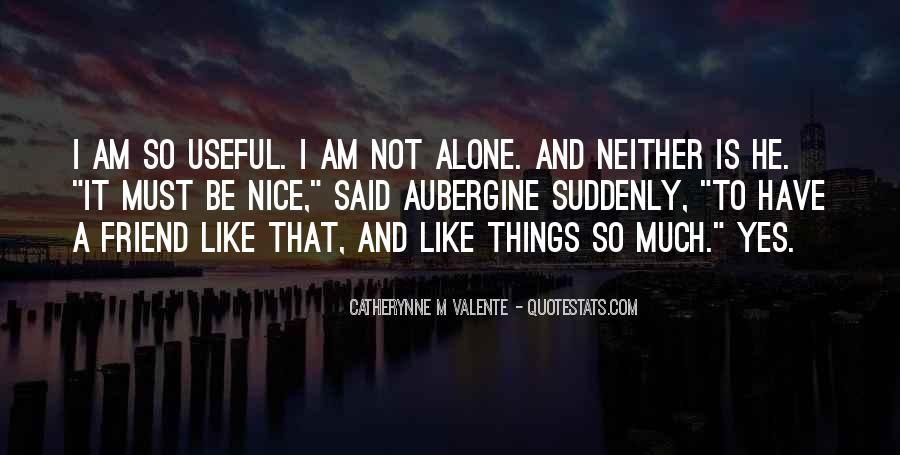 I Like Nice Things Quotes #643113