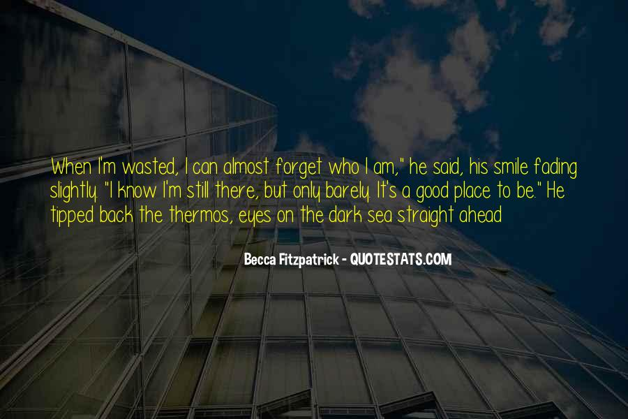 I Still Smile Quotes #1120195