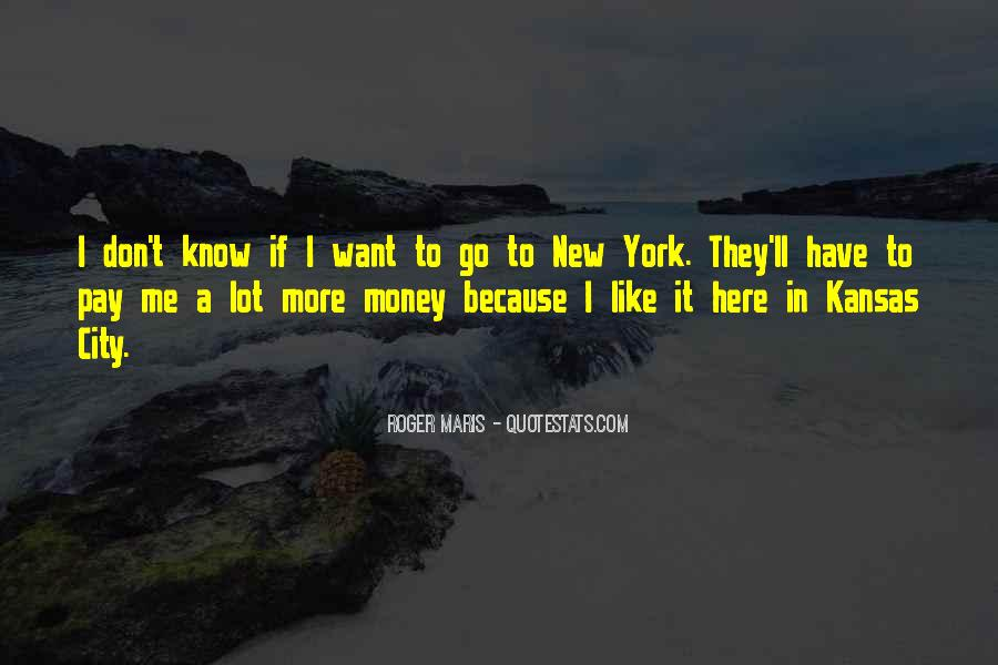 I Want More Money Quotes #357023