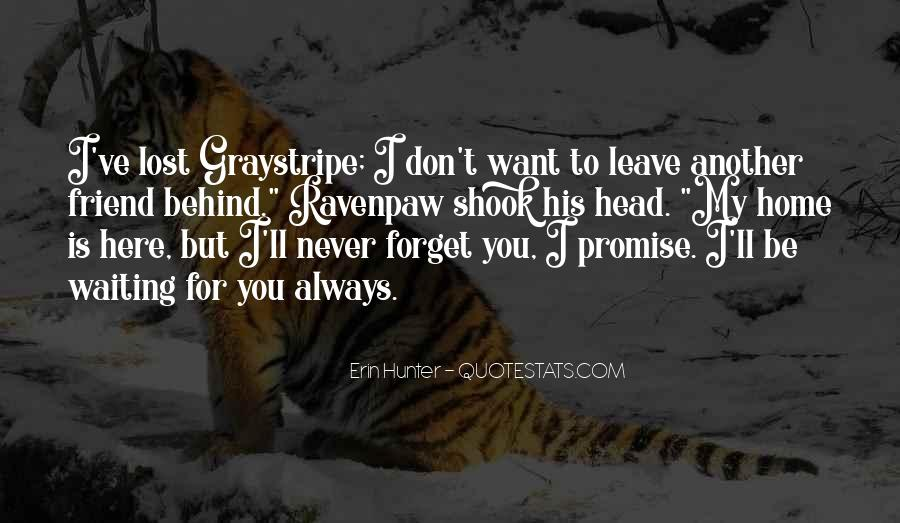 I Will Never Forget You Friend Quotes #1645984