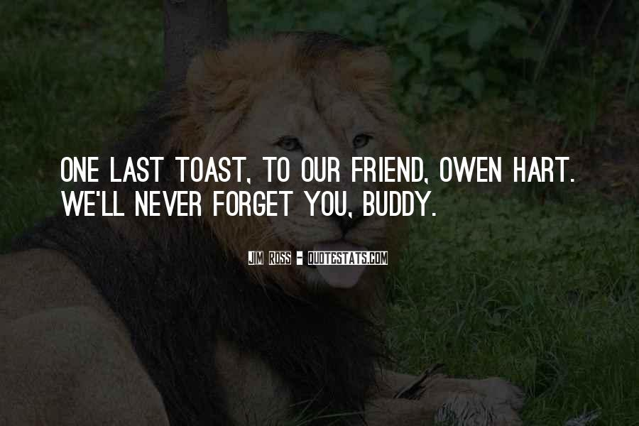 I Will Never Forget You Friend Quotes #952750