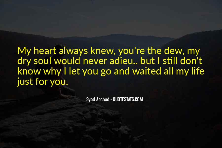 I Would Never Let You Go Quotes #185672