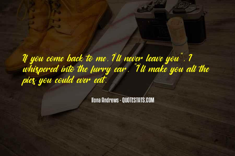 I'll Never Come Back Quotes #348127