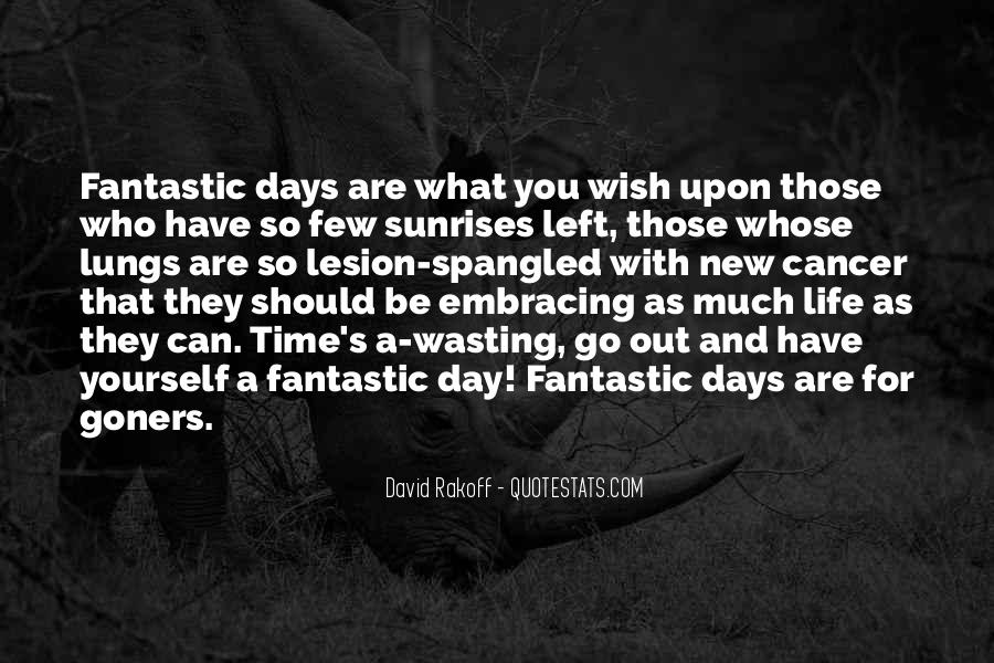 Quotes About Fantastic Days #44923