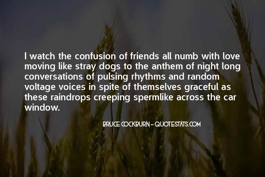 I'm Numb Quotes #681990