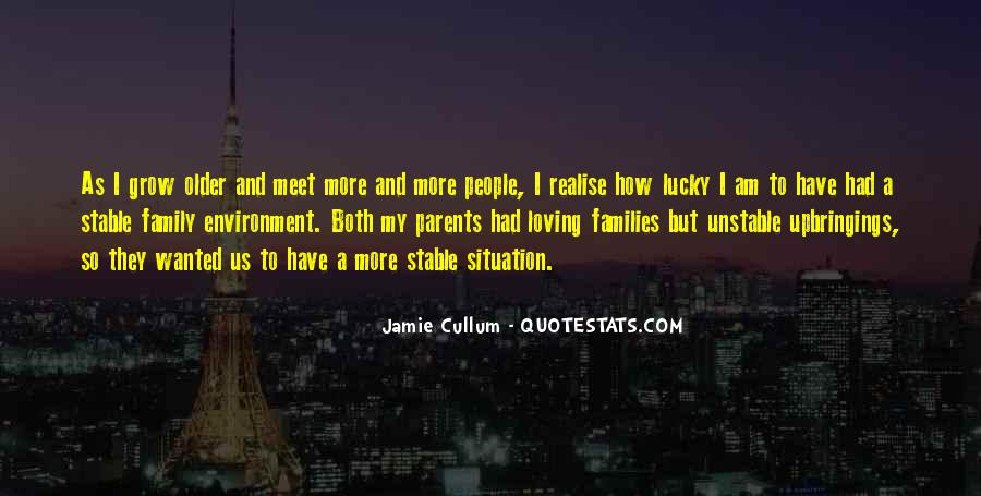 I'm So Lucky To Meet You Quotes #56801