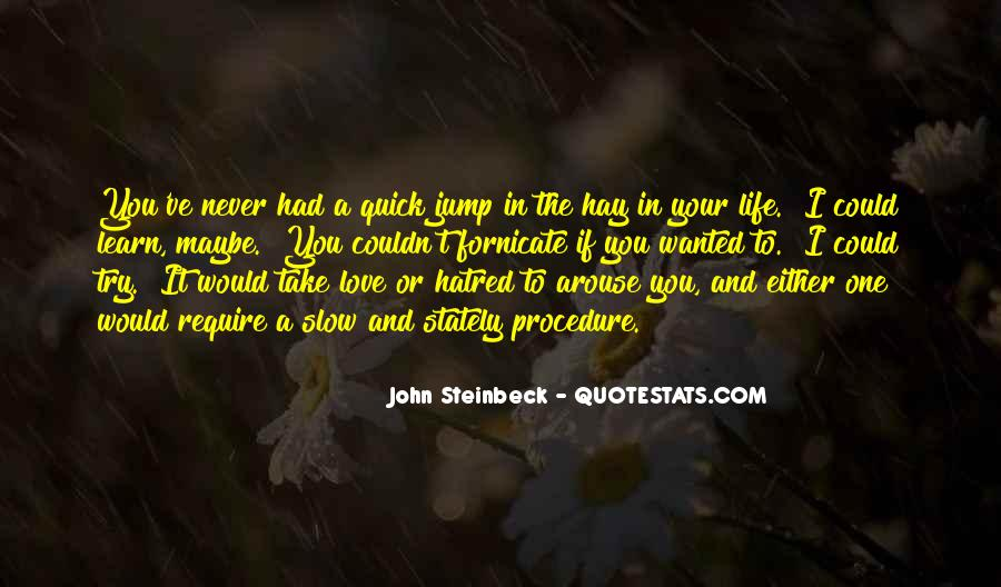 I've Never Had Quotes #67800