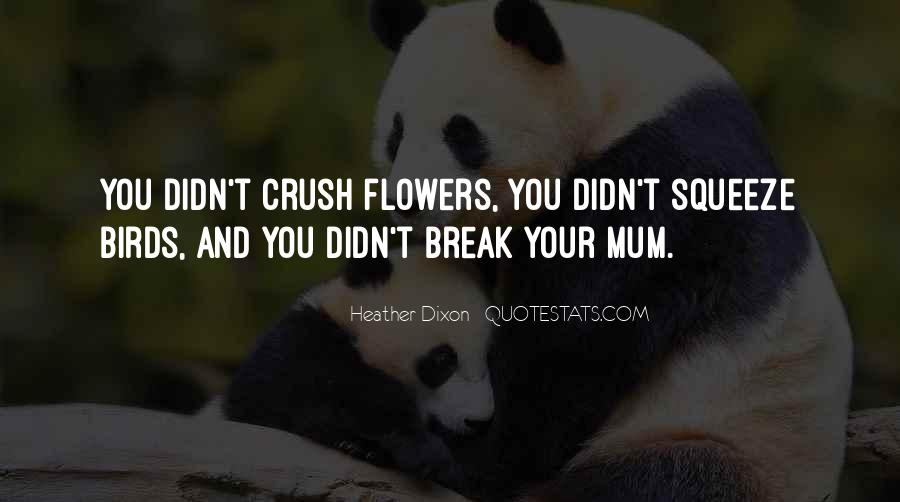 If Only Crush Quotes #6020