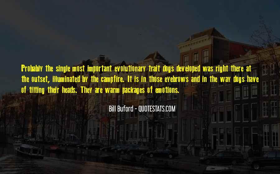 Illuminated Quotes #192609