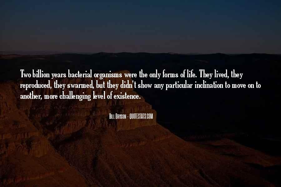 Inner Radiance Quotes #1647398