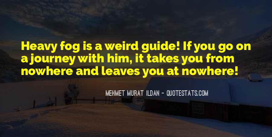 Is It Weird Quotes #220906