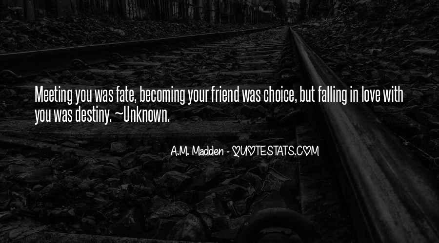 It Was Fate Meeting You Quotes #1707728