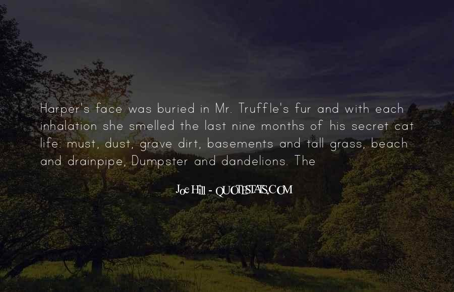 Joe Dirt Quotes #646668