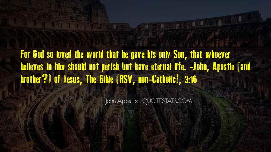 John 3 16 Bible Quotes #1268525