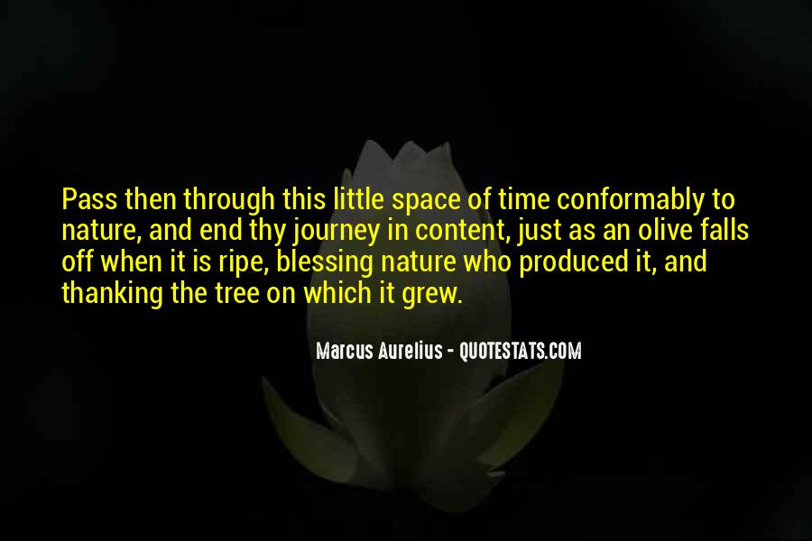 Journey Into Nature Quotes #418279