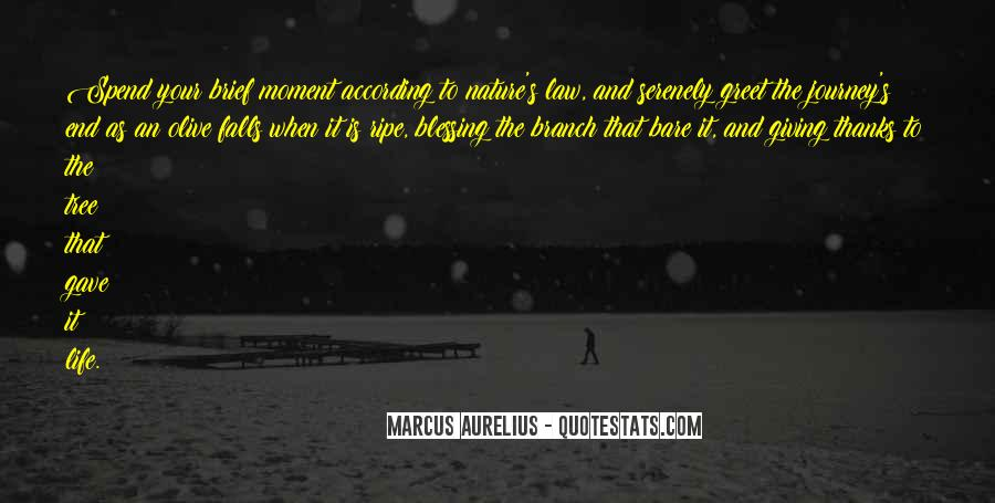 Journey Into Nature Quotes #83909