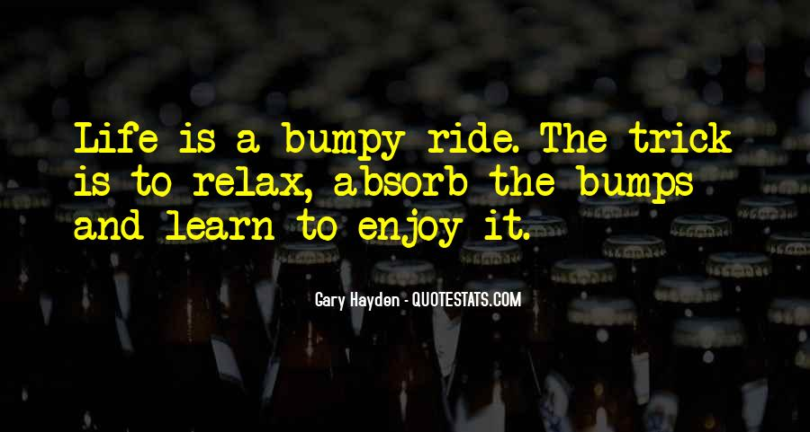 Just Enjoy The Ride Quotes #1028952