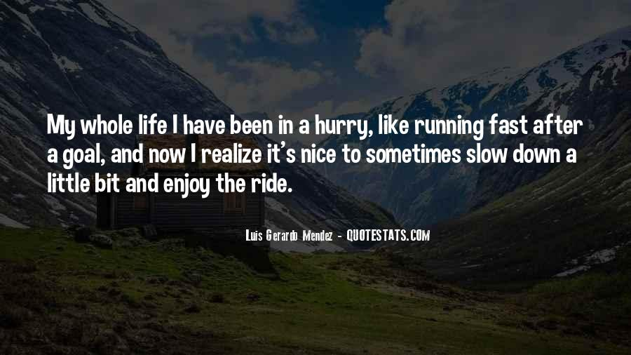 Just Enjoy The Ride Quotes #1099279