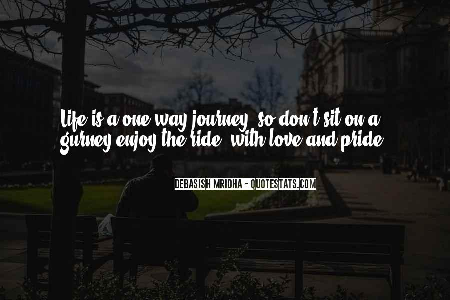 Just Enjoy The Ride Quotes #654461