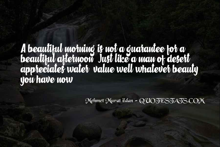 Just Like Water Quotes #1073777