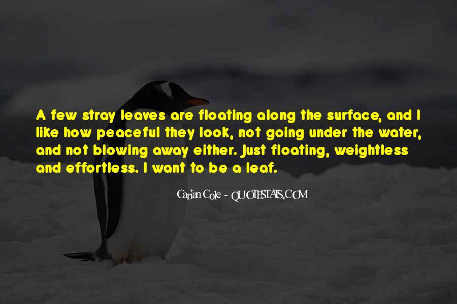 Just Like Water Quotes #31522