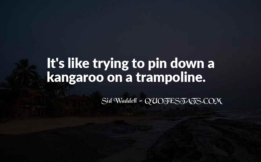 Kangaroo Quotes #880319