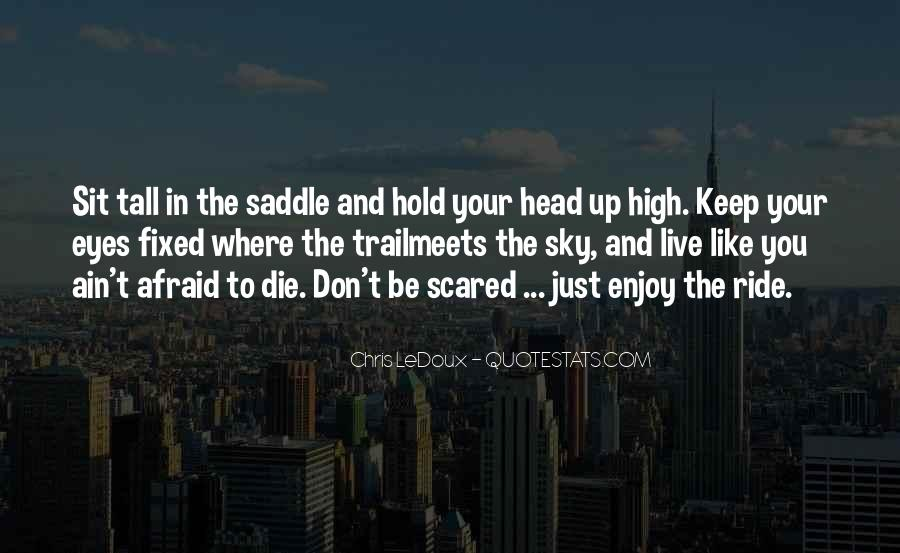 Keep Your Head Up High Quotes #428279