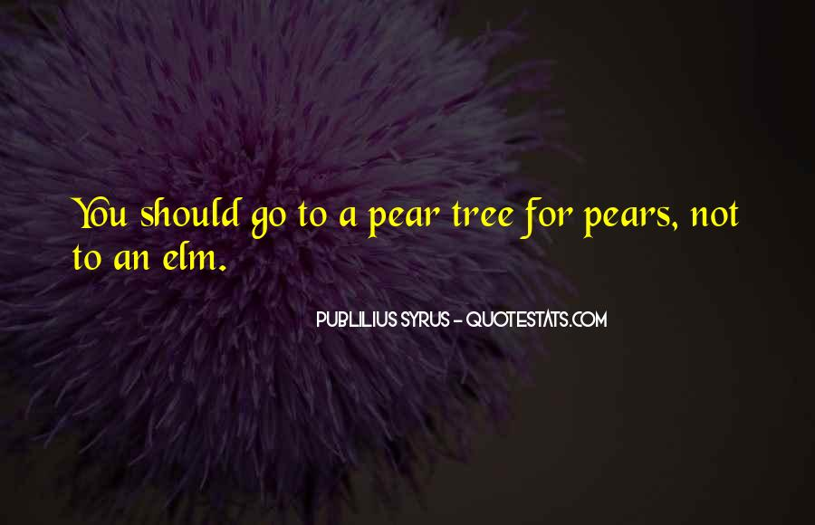Quotes About Elm #1000720