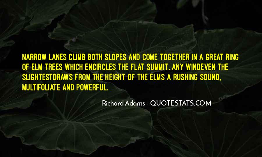 Quotes About Elm #753624