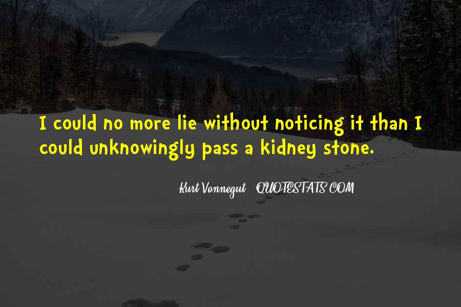 Kidney Stone Quotes #105630