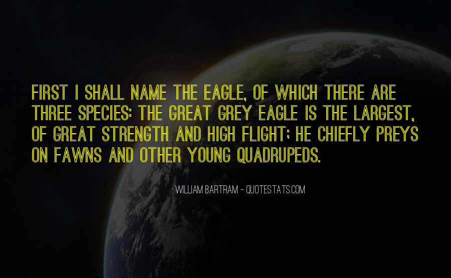 Quotes About Eagle Strength #938571