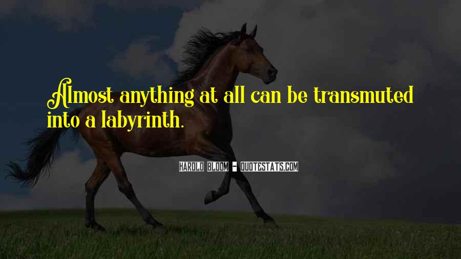 Labyrinth Quotes #214306