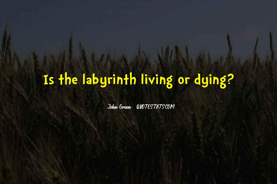 Labyrinth Quotes #401424