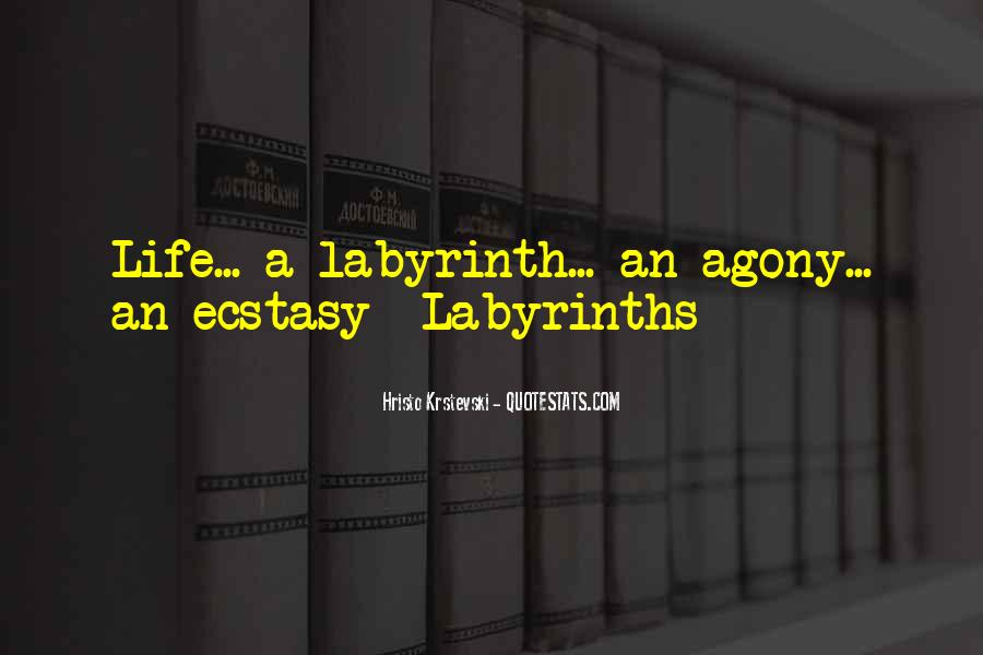 Labyrinth Quotes #776032