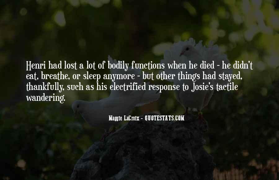 Lacroix Quotes #1764948