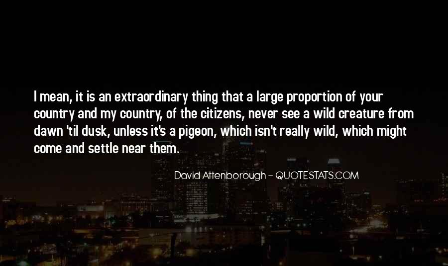 Quotes About Dusk And Dawn #1738033