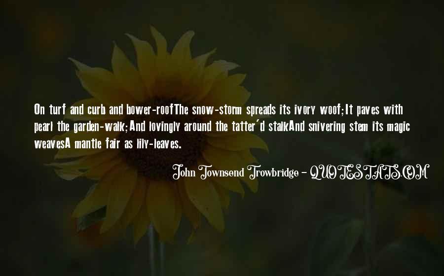 Lady Catherine Satire Quotes #1416985