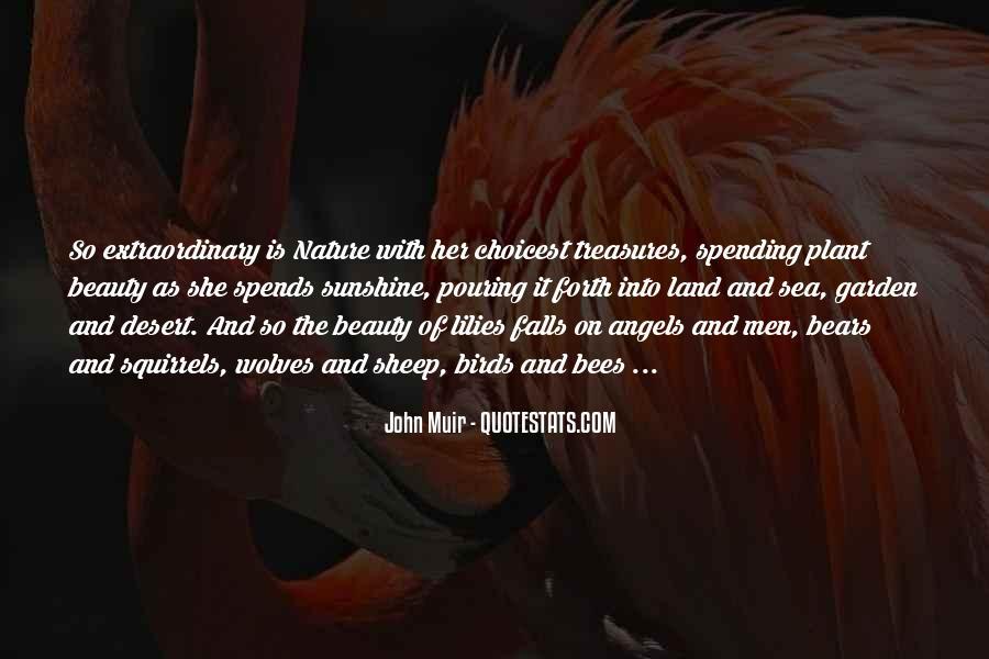Lady Catherine Satire Quotes #284689