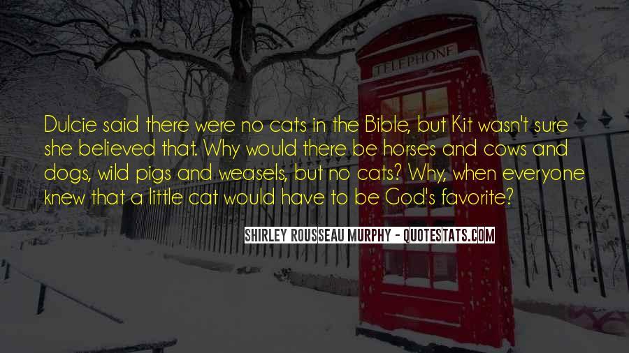 Quotes About Dulcie #358714