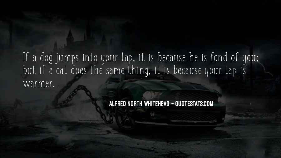 Lap Dog Quotes #1808353