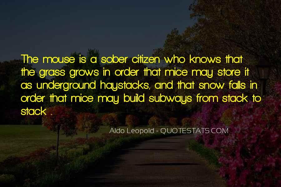 Lasher Quotes #791449