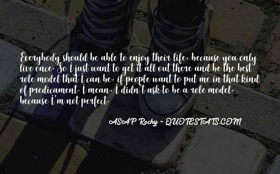 Life Can't Be Perfect Quotes #199255